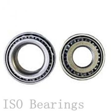 ISO BK2025 cylindrical roller bearings