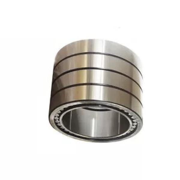 OEM Custom Any Size Chrome Steel Gcr15 Double Row Taper Roller Deep Groove Ball Bearing ... #1 image